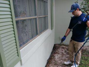 Termite Treatment in Sanford Florida