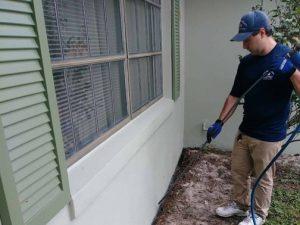 Deland Termite Treatment